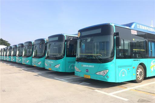 Shenzen bus électriques